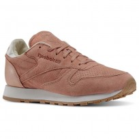 Reebok Classic Leather Shoes Womens Pink/Rustic Clay/Chalk/Desert Stone/Gum (119WDBRY)