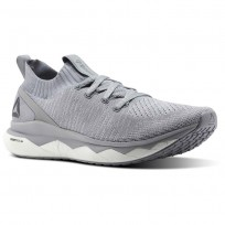 Reebok Floatride RS ULTK Lifestyle Shoes Mens Cloud Grey/Cool Shadow/Skull Grey/White (383XLVRA)