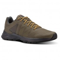 Reebok Astroride Trail Walking Shoes Mens Trek Grey/Coal/Ash Grey/Collegiate Gold (483LCKVS)