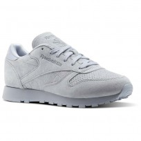 Reebok Classic Leather Shoes Womens Cloud Grey/Rain Cloud (496APYUN)