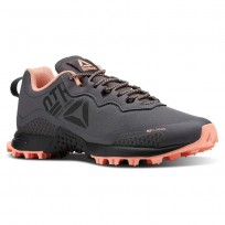 Reebok All Terrain Running Shoes Womens Ash Grey/Digital Pink/Black (581QDLOI)