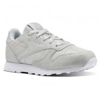 Reebok Classic Leather Shoes Girls Ms-Silver Met/Skull Grey/White (719IHCDF)