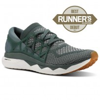 Reebok Floatride Run Running Shoes Mens Chalk Green/Tin Grey/White/Gum (826TXCOZ)
